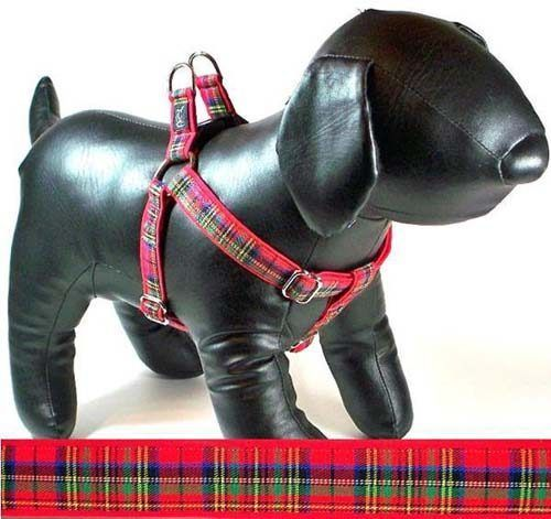 Cutie-Collar-Royal-Tartan-plaid-dog-harness