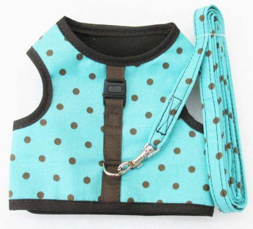 Velcro Vest dog Harness-Turquoise-with-Brown-Dots-with-Matching-Leash.