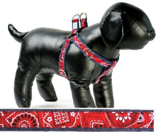 Cowboy fabric dog harness Cutie Collars