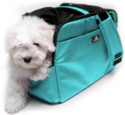 sleepypod atom Travel pet carrier for Dogs