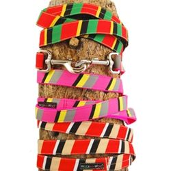 walk-e-woo-stripes-collection-dog-leads-leashes